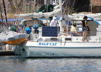 Half Cat looking cruise-ready at the dock
